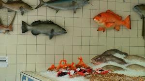 Sexton's Seafood Market, Destin Florida http://www.sextonsseafoodmarket.com/